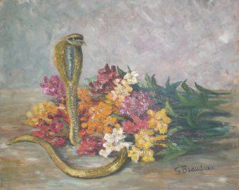 Giroflées au serpent